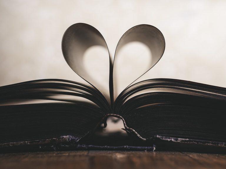 loi de l'attraction amour
