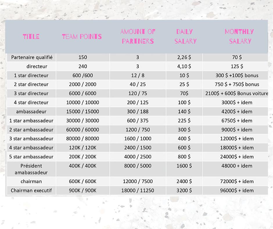 Plan de rémunération de P2S Travel : Revenu journalier Tableau récapitulatif quotidien des rémunérations